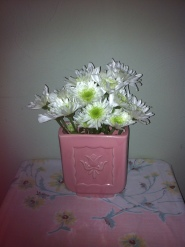 daisies in pink planter